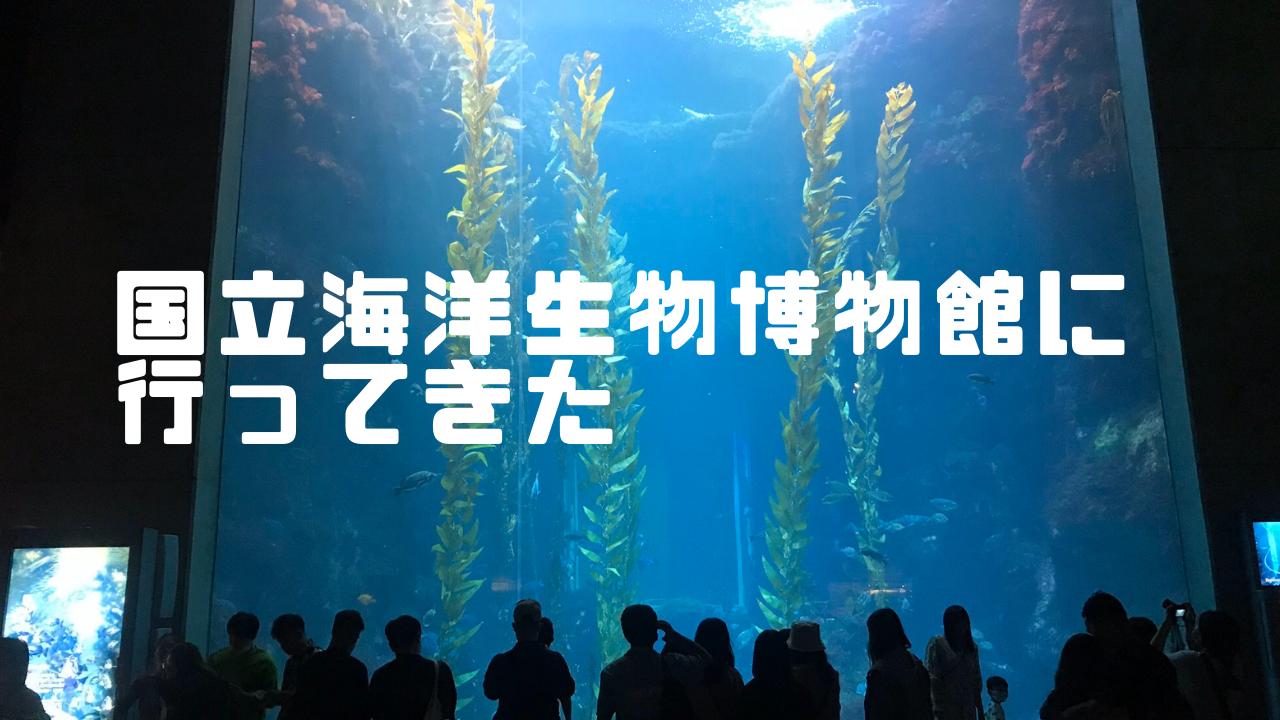 「屏東:墾丁」台湾最大の水族館、国立海洋生物博物館に行って来た。